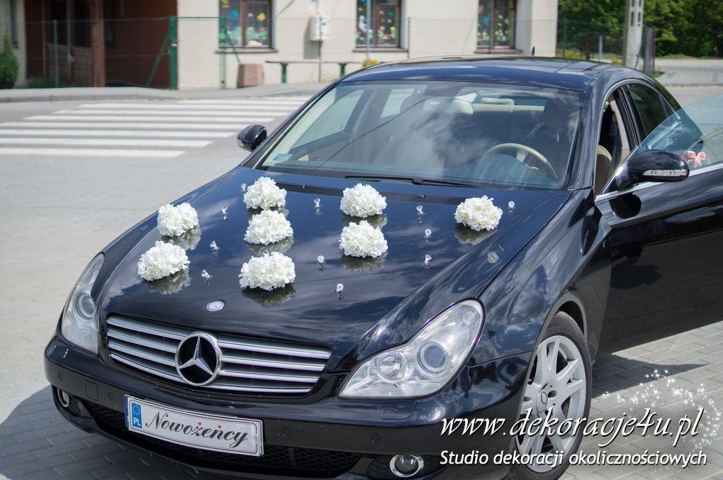Dekoracja samochodu Brzoza Krolewska