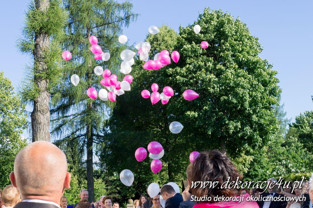 Pudlo niespodzianka z balonami helowymi